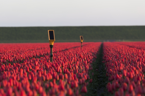 Orange Business in M2M deal with Dacom to improve farm yield optimization