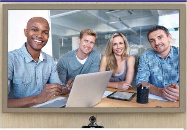 Lifesize videoconferencing